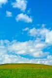 Grünes Feld, blauer Himmel und weiße Wolken Lizenzfreies Stockfoto