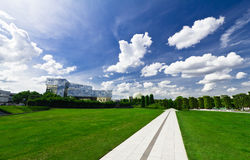 Grünes Feld der Straße Stockfoto