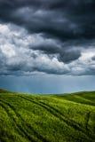 Grünes Feld mit dunklen Wolken im Hintergrund Stockbilder