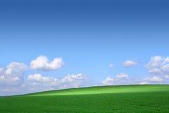 Grünes Feld mit einem Hintergrund des blauen Himmels und Lizenzfreie Stockfotos