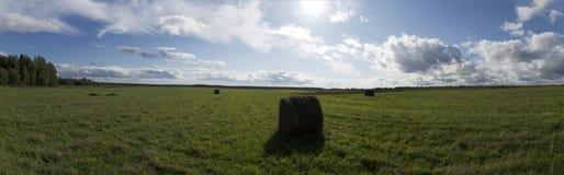 Grünes Feld mit Heuballen Lizenzfreie Stockfotografie