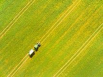 Grünes Feld mit Traktor Stockfoto