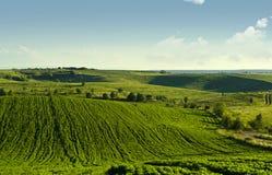 Grünes Feld mit Wolken und Bäumen Lizenzfreie Stockfotos