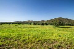 Grünes Feld in Pirenopolis Stockfoto