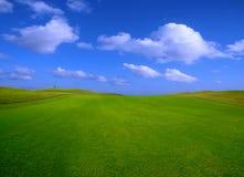 Grünes Feld am Sommer Lizenzfreie Stockfotos