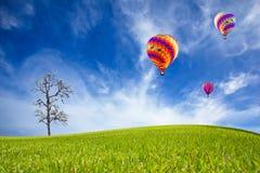 Grünes Feld und Ballon Stockfoto