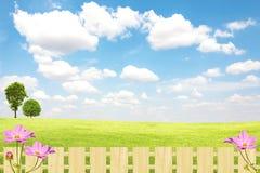 Grünes Feld und Baum mit blauem Himmel und Wolken lizenzfreie stockfotos