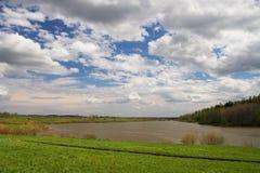 Grünes Feld und bewölkter Himmel. Lizenzfreie Stockfotos