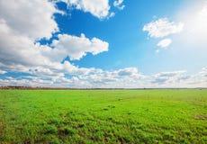 Grünes Feld und blauer bewölkter Himmel stockbild