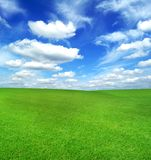 Grünes Feld und blauer Himmel Stockbilder