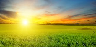 Grünes Feld und blauer Himmel mit hellen Wolken Über dem Horizont ist ein heller Sonnenaufgang Breites Foto stockfoto