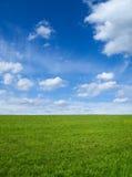 Grünes Feld und Himmel stockbild