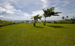 Grünes Feld und Ozean stockfotografie