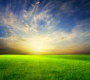 Grünes Feld und schöner Sonnenuntergang stockfotos