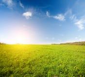 Grünes Feld und schöner Sonnenuntergang lizenzfreie stockfotos