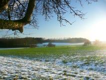 Grünes Feld und Schnee Lizenzfreie Stockbilder