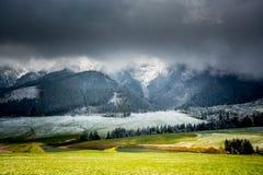 Grünes Feld und schneebedeckter Gebirgsfrost Stockbild