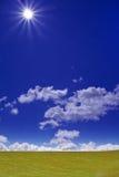 Grünes Feld und Sun Stockbild