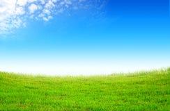 Grünes Feld und weiße Wolken Stockfoto