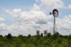Grünes Feld und wildmill im Land Stockfotos