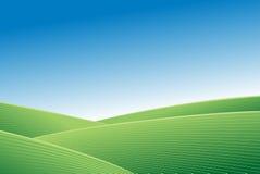 Grünes Feld und Zusammenfassungshintergrund des blauen Himmels Stockfotografie