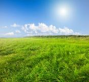 Grünes Feld unter blauer bewölkter Himmel Whitsonne stockfotos