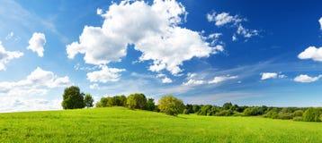 Grünes Feldpanorama und blauer Himmel Lizenzfreie Stockbilder