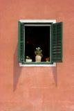 Grünes Fenster auf Rot Stockbilder