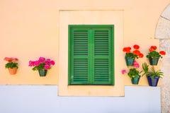 Grünes Fenster mit Blumen Lizenzfreie Stockfotos