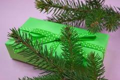 Grünes Geschenk mit Tupfenband auf Rosa Stockbild