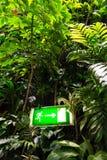 Grünes glänzendes Ausgangszeichen auf lebender grüner Wand, vertikaler Garten Stockfotografie