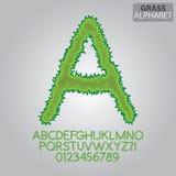 Grünes Gras-Alphabet und Zahl-Vektor Lizenzfreie Stockfotos