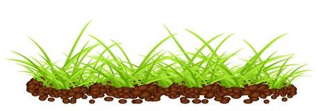 Grünes Gras auf dem Boden Stockfoto