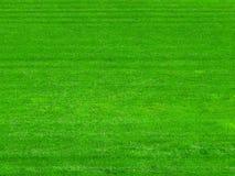 Grünes Gras auf dem Fußballplatzhintergrund lizenzfreie stockfotografie