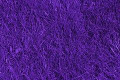 Grünes Gras auf dem Rasen, der im ultravioletten tont Abstraktes backgro Stockbild