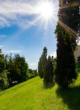 Grünes Gras auf einer Lichtung und Strahlen der Sonne Stockfotos