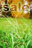 Grünes Gras auf einer Wiese mit einem Wort   stockbilder