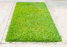 Grünes Gras auf quadratischem Betonblock Lizenzfreie Stockfotografie