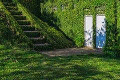 Grünes Gras bedeckte Treppenhaus und Wände mit weißen Türen Lizenzfreie Stockbilder