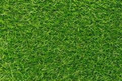 Grünes Gras-Beschaffenheits-Hintergrund-Muster lizenzfreies stockbild