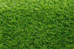 Grünes Gras-Beschaffenheits-Hintergrund-Muster stockfotografie