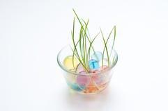 Grünes Gras, das in einem Teller mit Marmoren wächst stockfotografie