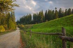 Grünes Gras des alten rustikalen Straßenbretterzauns Stockfoto