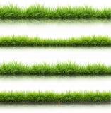 Grünes Gras des neuen Frühlinges lokalisiert mit Wasserreflexion Lizenzfreie Stockfotografie