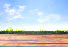 Grünes Gras des neuen Frühlinges mit grünem bokeh Lizenzfreies Stockfoto