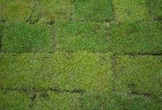 Grünes Gras-Flecken Stockfotos