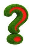 Grünes Gras Fragezeichen vektor abbildung