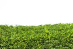 Grünes Gras getrennt Stockfoto