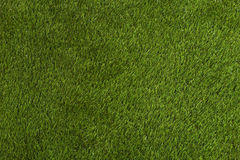 Grünes Gras-Hintergrund Lizenzfreie Stockfotografie