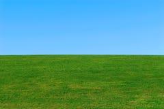 Grünes Gras, Hintergrund des blauen Himmels Lizenzfreies Stockfoto